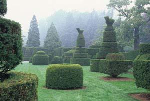 longwood-garden