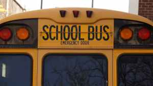 back bus education school