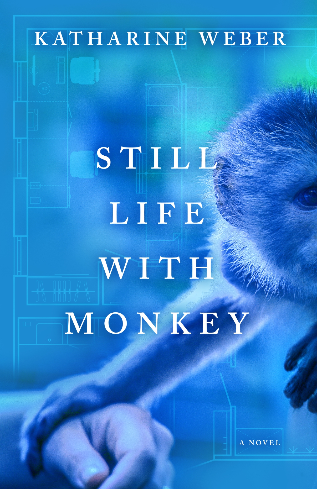 STILL LIFE WITH MONKEY Cover.jpg