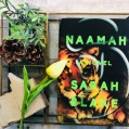 Sarah Blake | NAAMAH: https://leslielindsay.com/2019/04/26/a-magician-with-words-poet-sarah-blake-wows-the-world-with-her-her-debut-fiction-based-on-the-ancient-re-telling-of-noahs-ark-from-his-wife-naamahs-pov