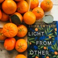 Erika Swyler | LIGHT FROM OTHER STARS: https://leslielindsay.com/2019/05/29/erika-swyler-talks-about-her-stunning-introspective-novel-about-fathers-and-daughters-space-time-the-oddity-but-intelligence-of-florida-plus-her-favorite-planet-in-a-light-from-other-starsLIGHT FROM OTHER STARS