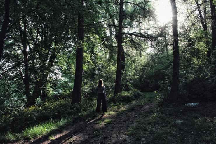 woman standing beside tree