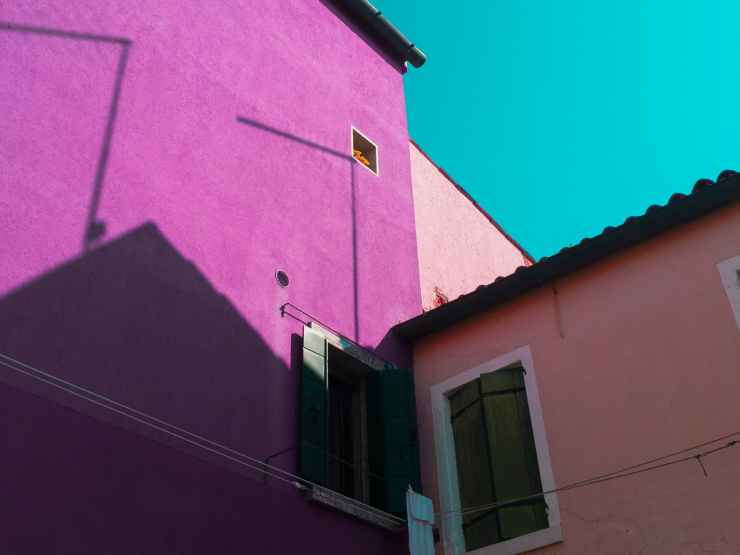 purple painted wall