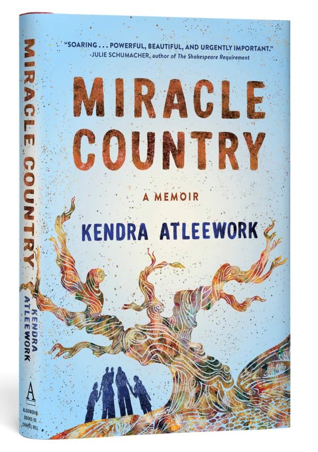 Atleework_MiracleCountry_HC_3D_HR_rgb (2)