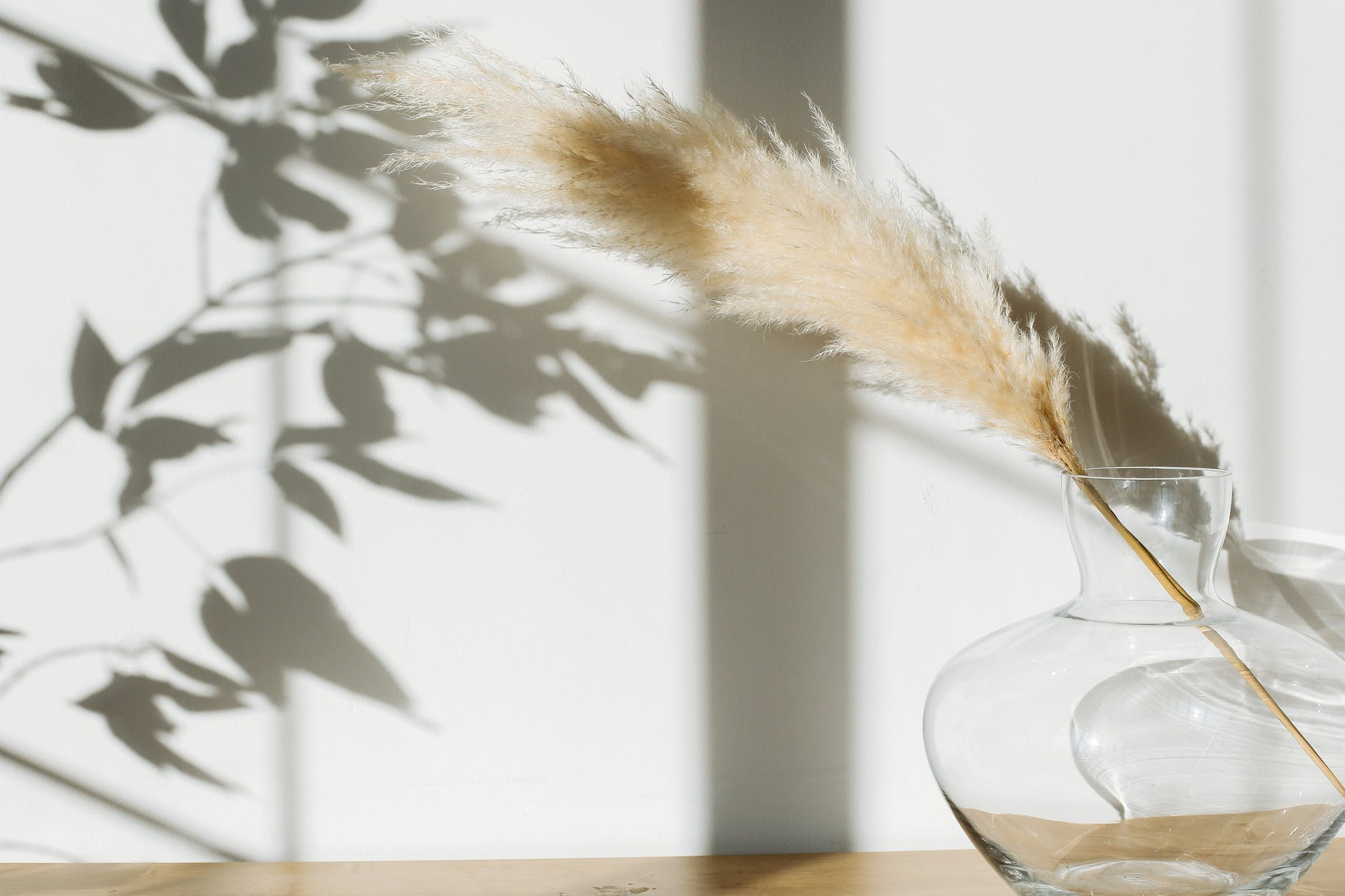 vase with pampas grass placed on desk