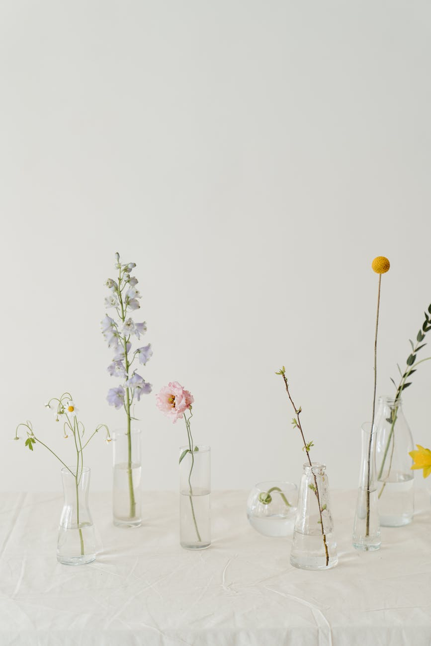photo of flowers in clear glass vase